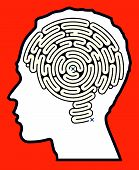 Brain Maze Puzzle