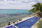 Breezy Tropical Swim