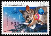 Postage Stamp Australia 1990 Opossum On Christmas Tree