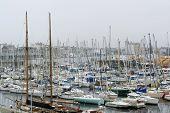 Harbor Scenery