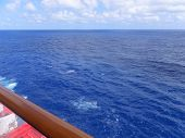 View of Atlantic Ocean from a Cruise Ship