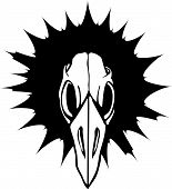 Постер, плакат: Птица черепа 3