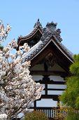 Japan Temple