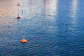 Yachts Moorings Buoys Of Small European Marina