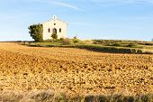 chapel with field, Plateau de Valensole, Provence, France