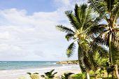 Skeete's Bay, Barbados, Caribbean