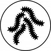 bacteria symbol