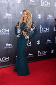LAS VEGAS - APR 6:  Shakira at the 2014 Academy of Country Music Awards - Arrivals at MGM Grand Gard