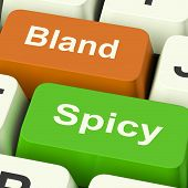 Bland Spicy Keys Shows Plain Hot Cooking Flavours