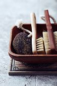 Natural dark Pumice and Bath Brushes