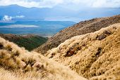 View from public track at Tongariro National Park in New Zealand
