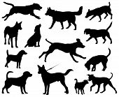 Dogs vector silhouettes