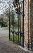 Black Wrought Iron Gate With Golden Decorations