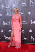 LAS VEGAS - APR 6:  Sarah Davidson at the 2014 Academy of Country Music Awards - Arrivals at MGM Gra