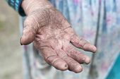 stock photo of beggar  - Begging for money. Old womans hand .