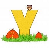 Alphabet Pumpkin Patch Y