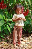 Yasuni, National Park, Ecuador, November 2012, Young huaorani girl explaining about insects life
