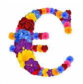 Euro symbol from flowers