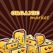 vector illustration of cheese. organic food concept