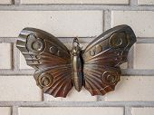 Bronze Butterfly On Wall