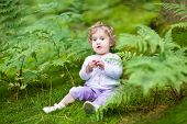 Little Curly Baby Girl Gathering Wild Raspberries In A Beautiful Autumn Forest