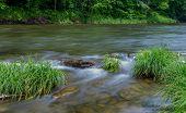 Little Beaverkill River - Famous Trout Stream In New York