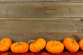 Autumn leaves and pumpkin border