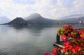 stock photo of annecy  - Landscape of Annecy lake and flowers in Savoy France - JPG
