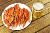 Tasty Boiled Crayfish And Beer On A Table