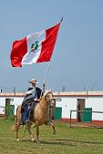 Peruvian Paso Horse and Flag