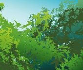 Colorful landscape of summer foliage - Vector illustration