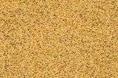Sandpaper Close Up Background