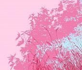 Colored landscape of foliage - Vector illustration - pink morning