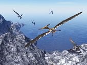 foto of pteranodon  - Pteranodon birds flying upon costal rocks by beautiful day  - JPG