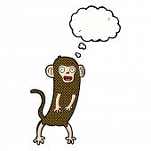 cartoon crazy monkey with thought bubble