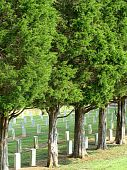 stock photo of revolutionary war  - An old military cemetary with graves from the Revolutionary War - JPG