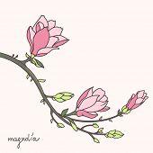 Stylish magnolia flower brunch