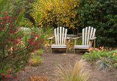 Two Adirondack chairs