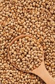Soy Background With Large Spoone Full With Seeds