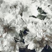 art grunge floral cool sepia vintage paper textured watercolor background with white asters