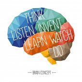 Brain concept, education concept