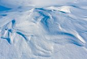 Snow texture on meadow - abstract background