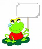 frog with the sign