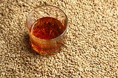 stock photo of tumblers  - Tumbler glass with whiskey standing on barley malt grains - JPG