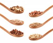 Cashew, Soy, Hazelnut, Peanut, Chickpeas
