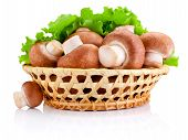 picture of crimini mushroom  - Fresh field mushroom in basket and Leaves of green salad Isolated on white background - JPG