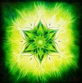 Flower Mandala On A Green Background Fractal Effect