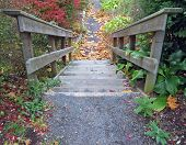 Outdoor Stairs In Autumn poster