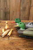 foto of duck  - Hunting - JPG