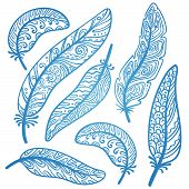 pic of feathers  - Vector colored feathers set - JPG